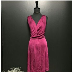 BANANA REPUBLIC Rich Rayon Purple Dress(Sz S)